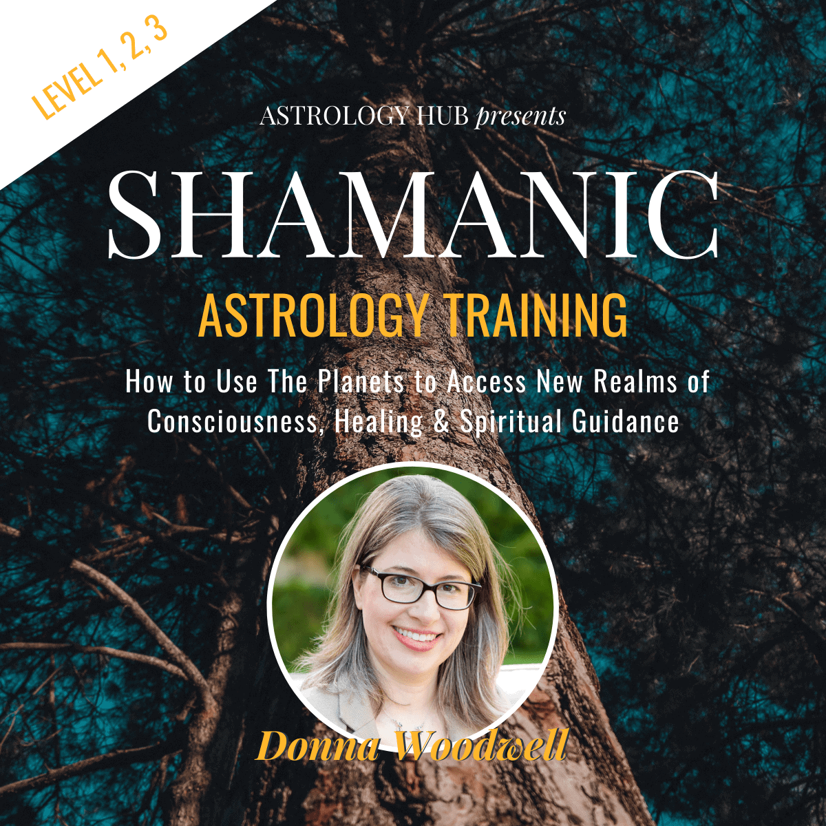 shamanic astrology training w/ Donna Woodwell