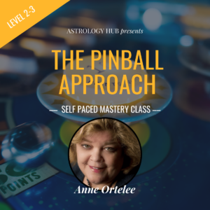 The Pinball Approach w/ Anne Ortelee